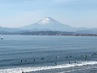 西浜、正月の富士.jpg