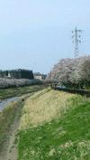 河原さん4月写真②.jpg