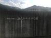 1804 津久井やまゆり (4).jpg